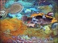 Magic Lantern Aquarium 3D Screensaver