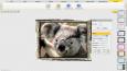 Photocoolex Flash Image Editor Script