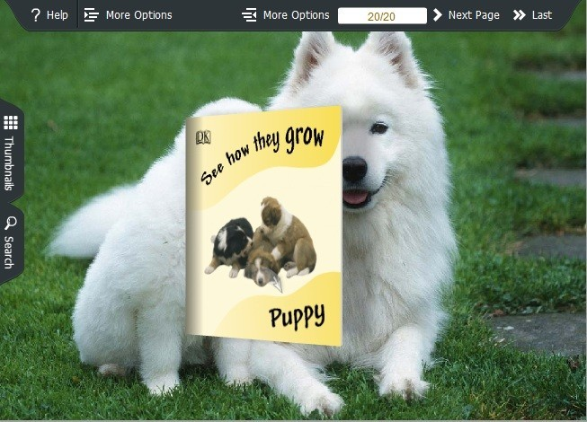 Puppy Theme for Wise PDF to FlipBook pro