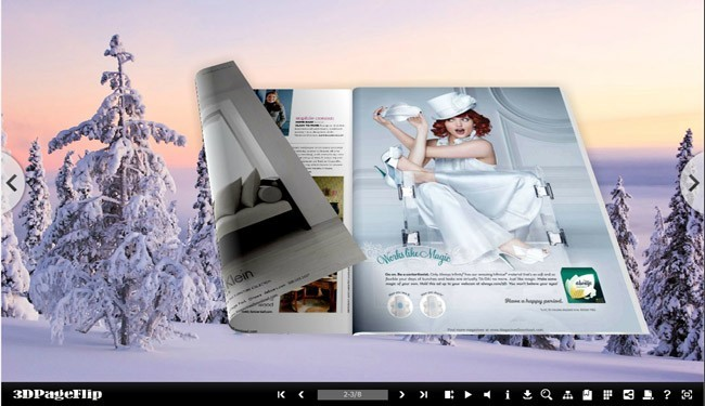 Cold Theme for 3D Page Flip Book