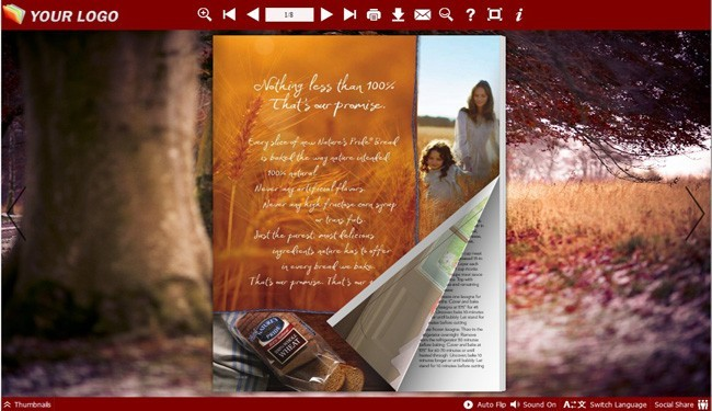 Road Theme for Flash Page Flip Template