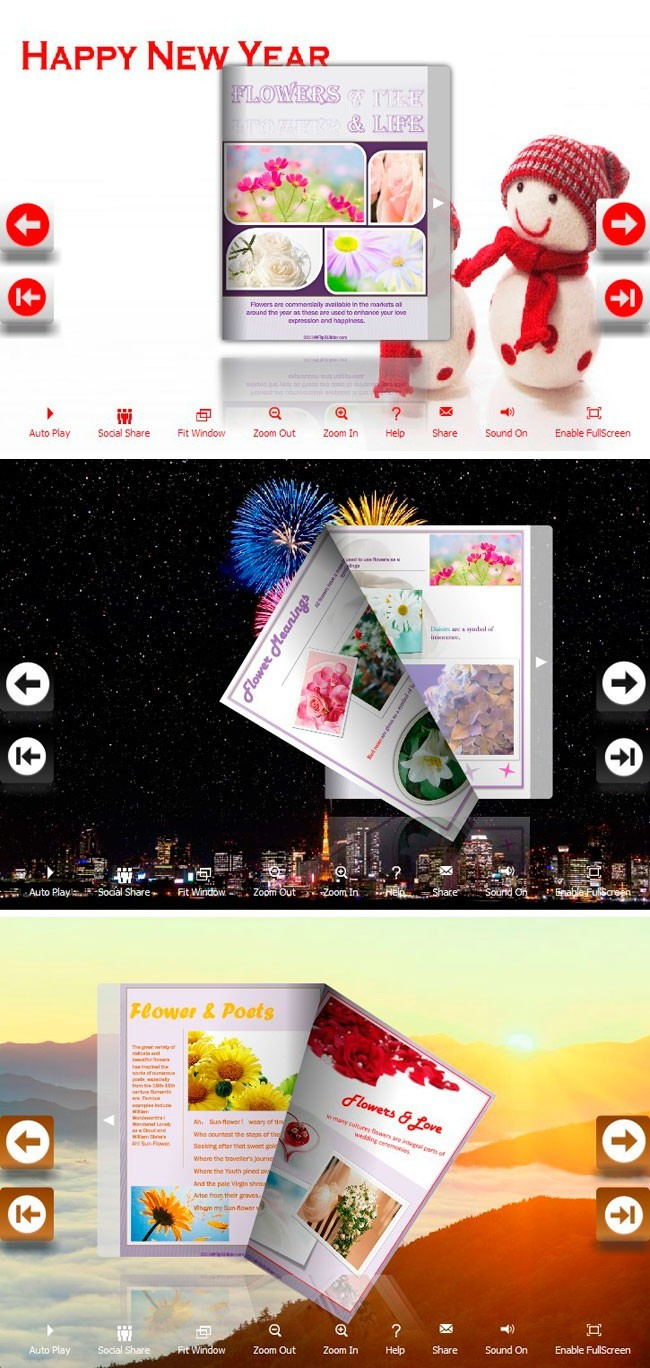 Flip_Themes_Package_Lively_New_Year