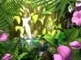 Butterflies Kingdom 3D