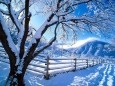 White Winter Screensaver