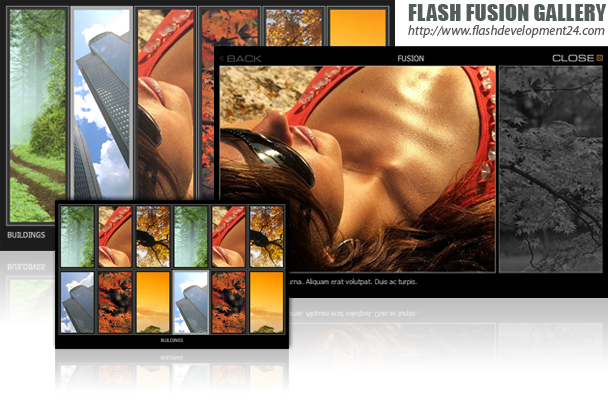 Flash Fusion Gallery DW Extension