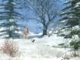 Winter Afternoon Screensaver